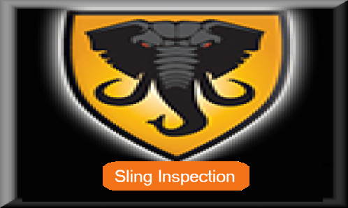 slinginspectionbtslinginspection.png